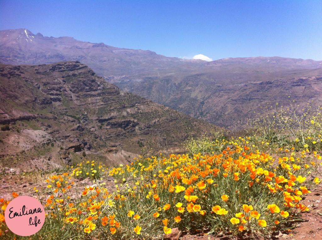 42 caminho da montanha santiago primavera
