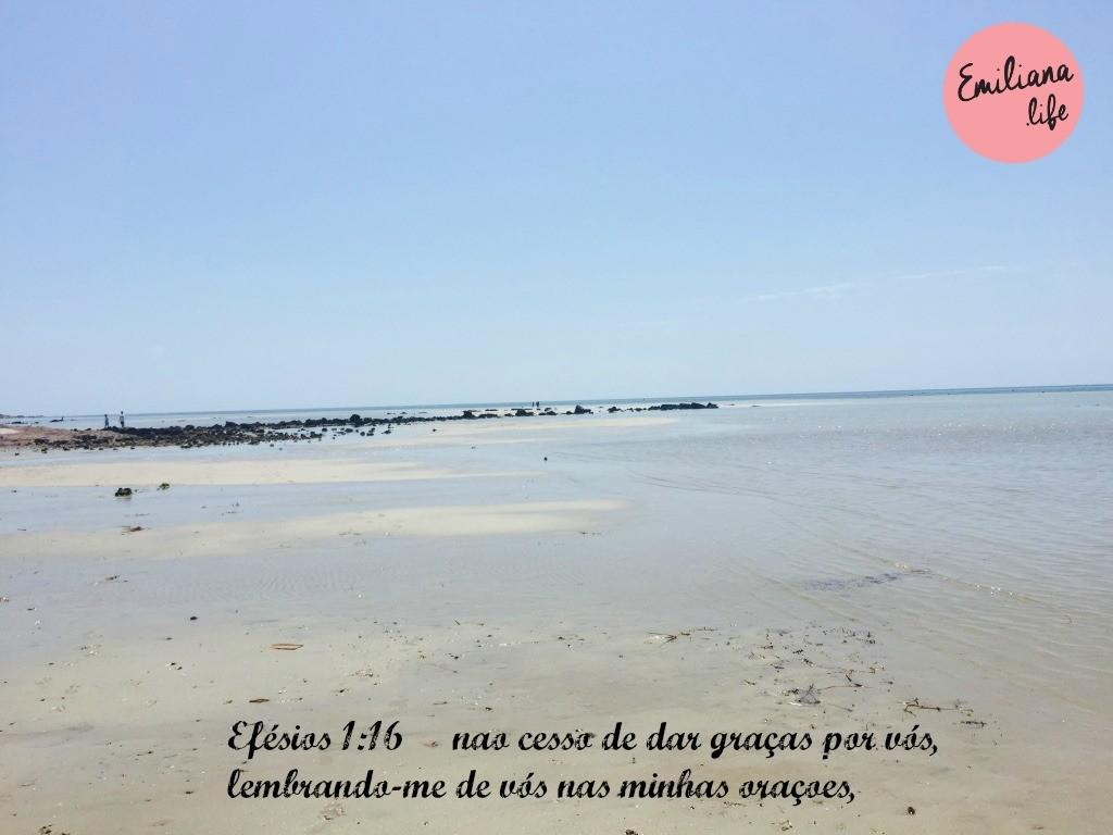 148 efesio 1 16
