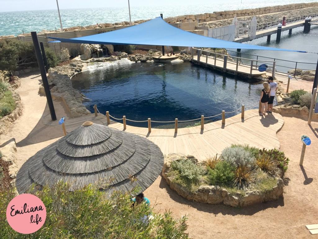 11 parte exterior aquario