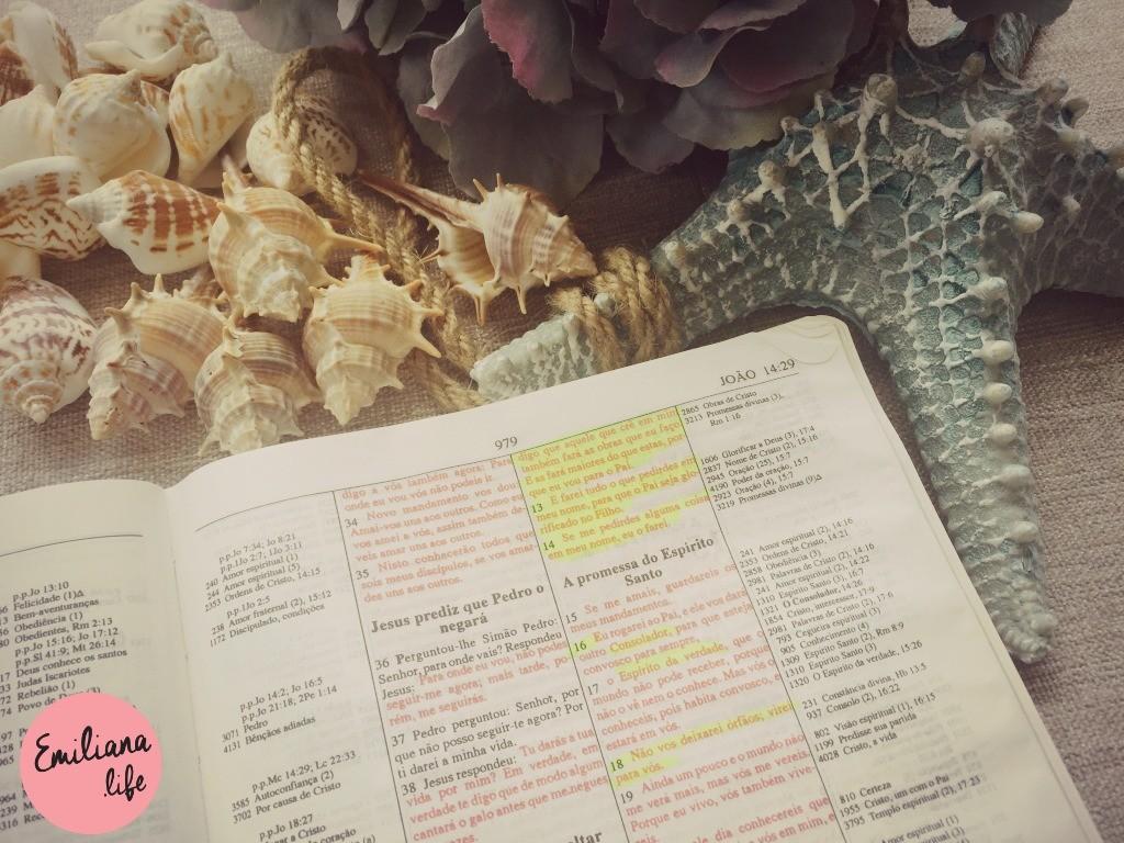 171 estudo espirito santo b azul