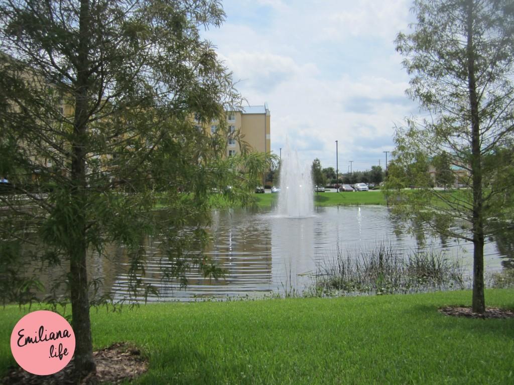 001 lagoa em frente hotel orlando