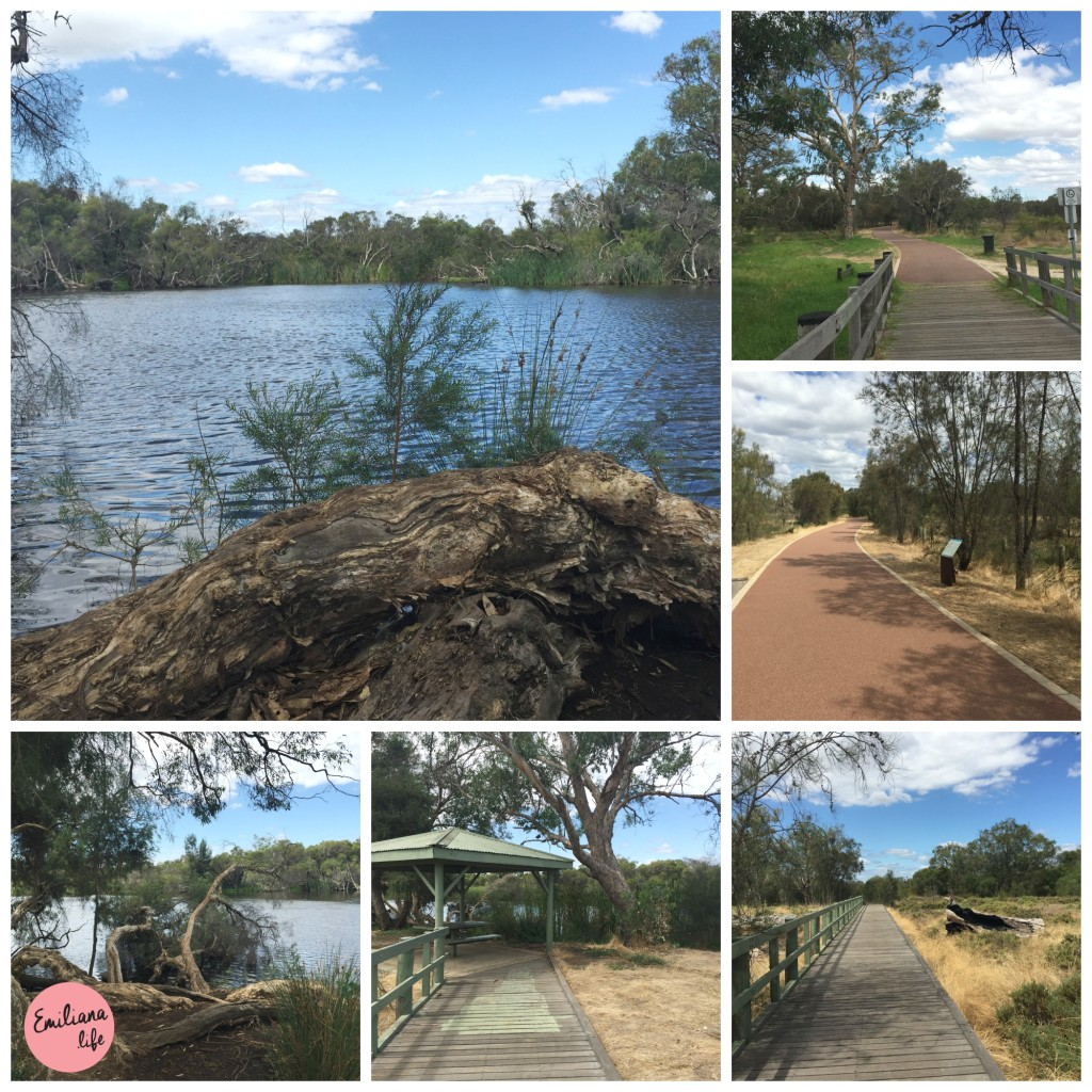 47 path at canning river