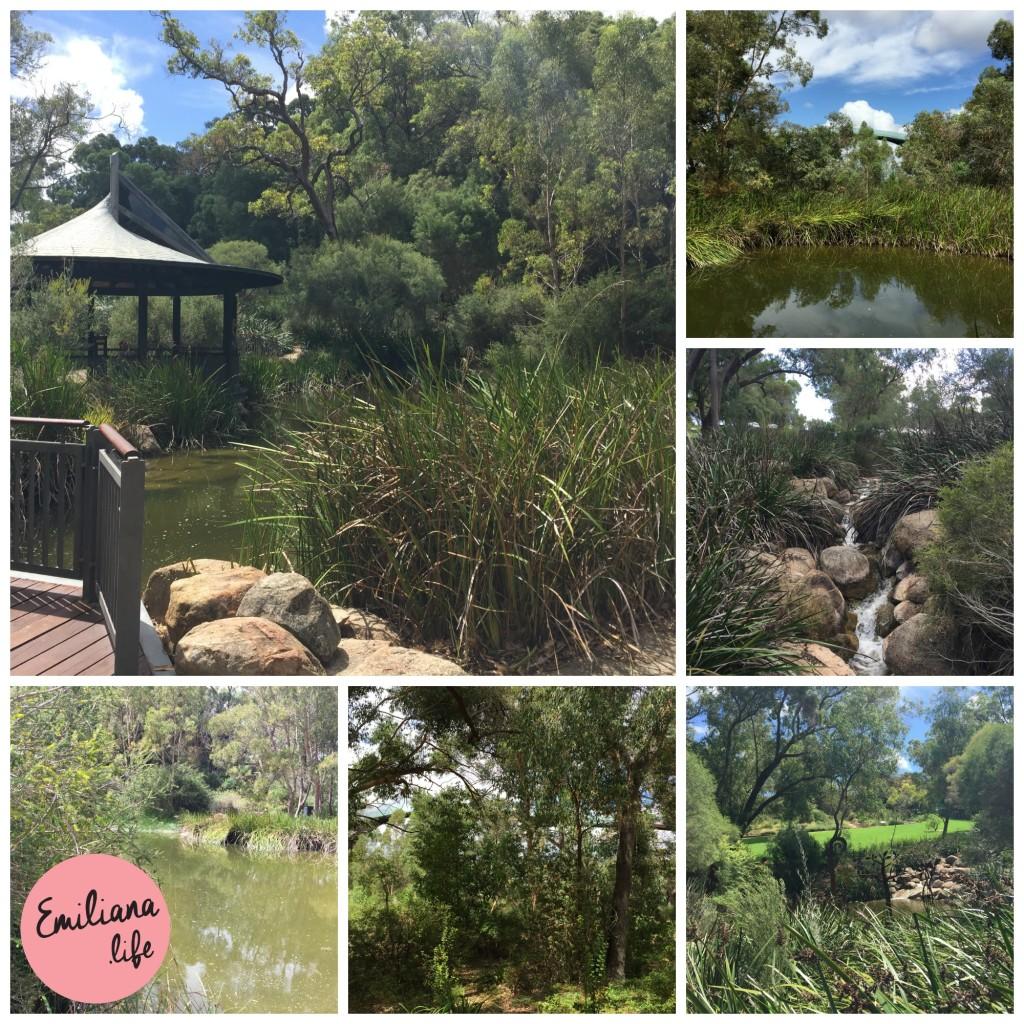 50 lagoa kings park