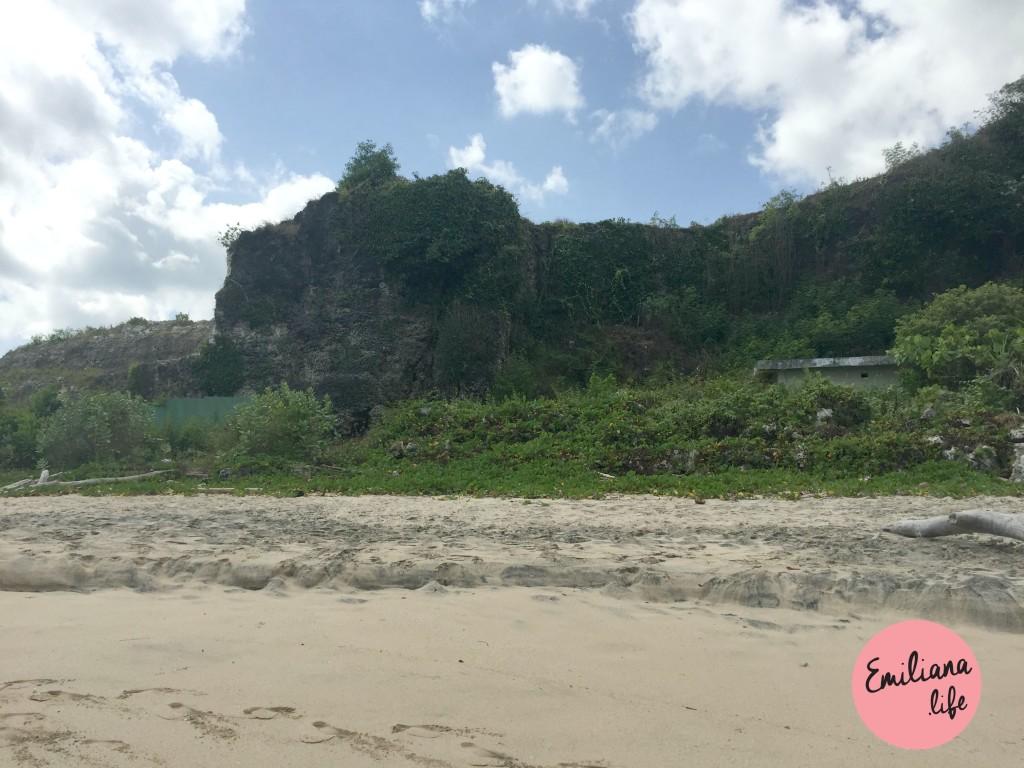 75 mato praia dreamland