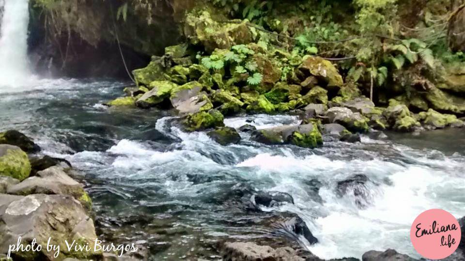 97 rio pedras vivi burgos