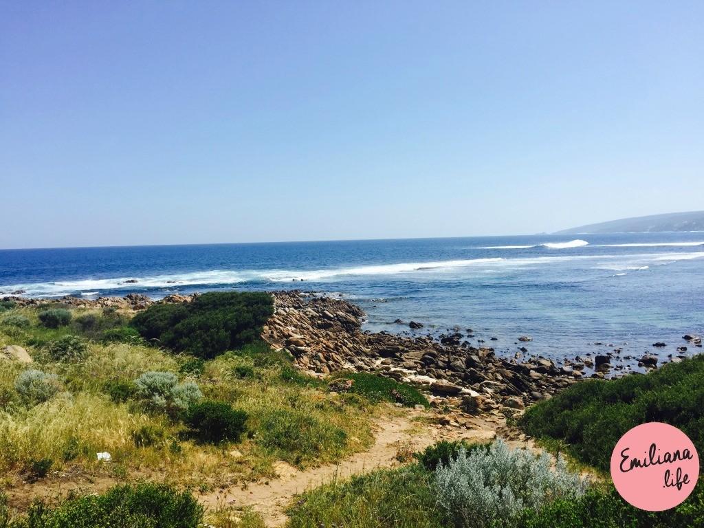 282 yalingup praia trilha