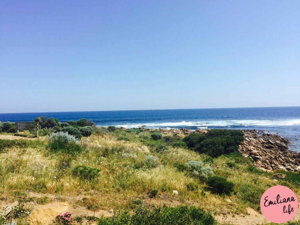 284 yalingup beach verde