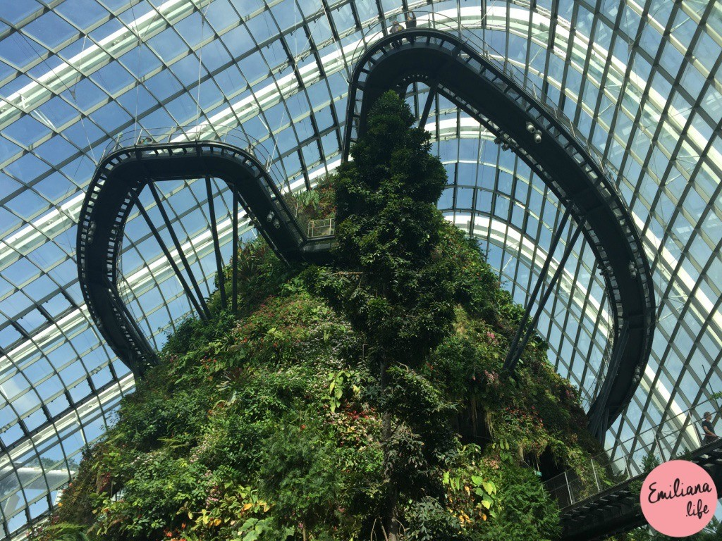 613 passarela cloud forest singapore