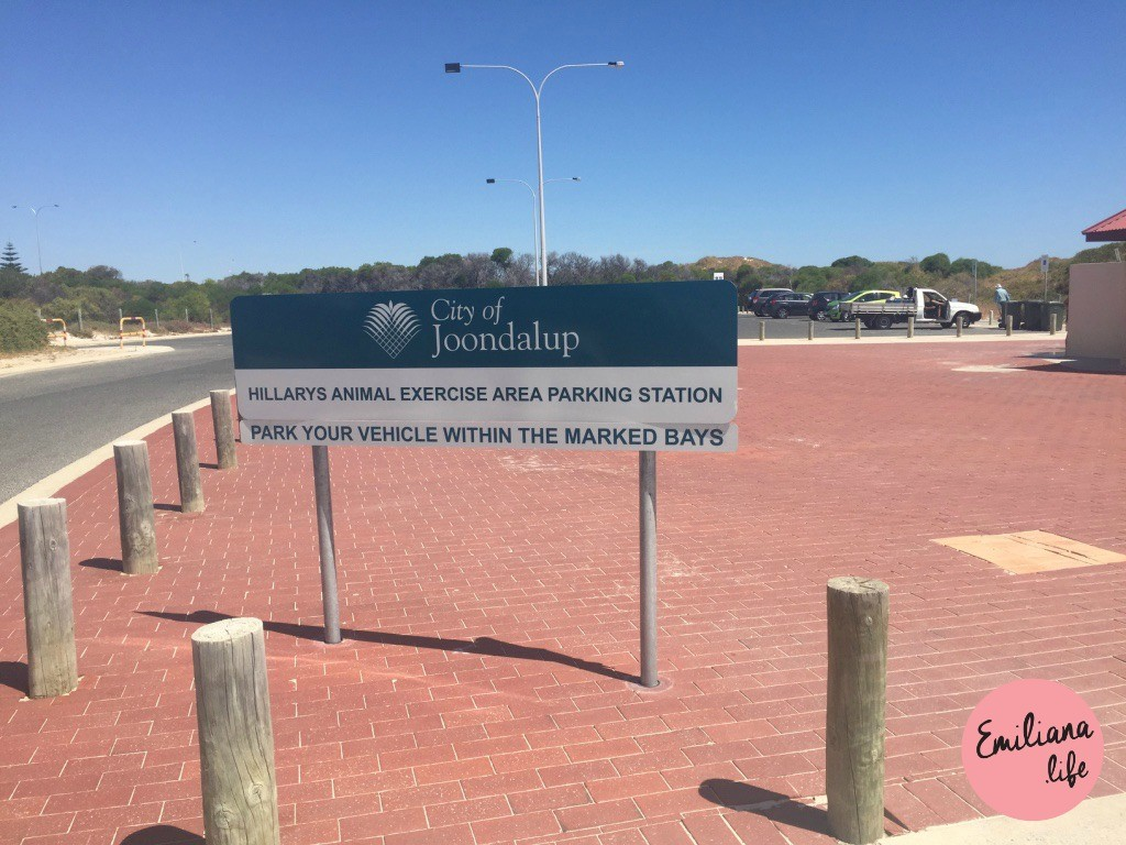 837 hillarys animal exerceise area