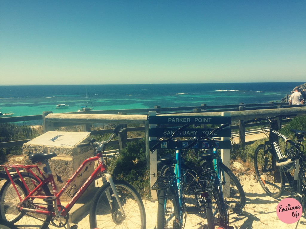231 parker point bike