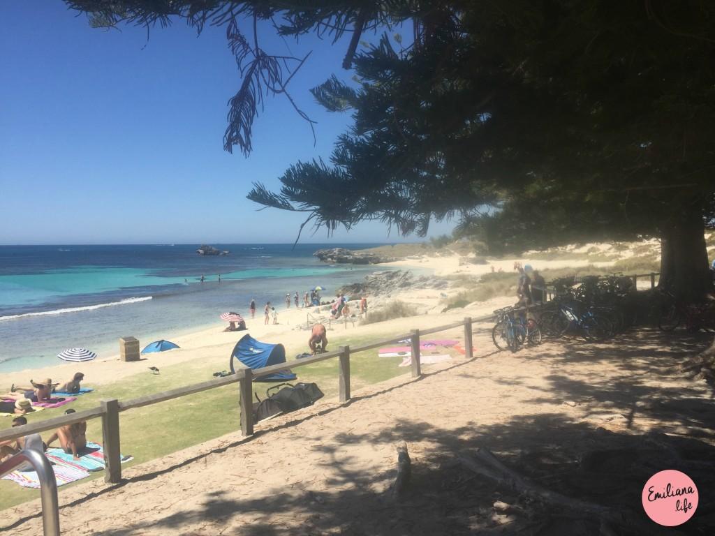 236 praia piscina rottnest