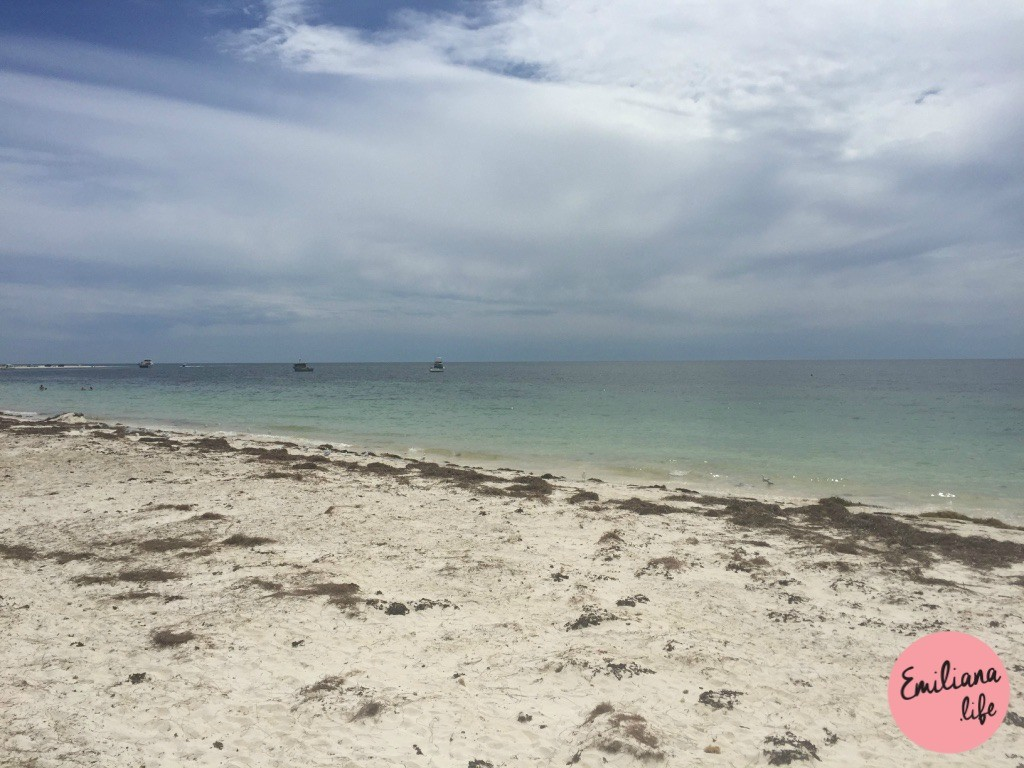 01 praia cervantes