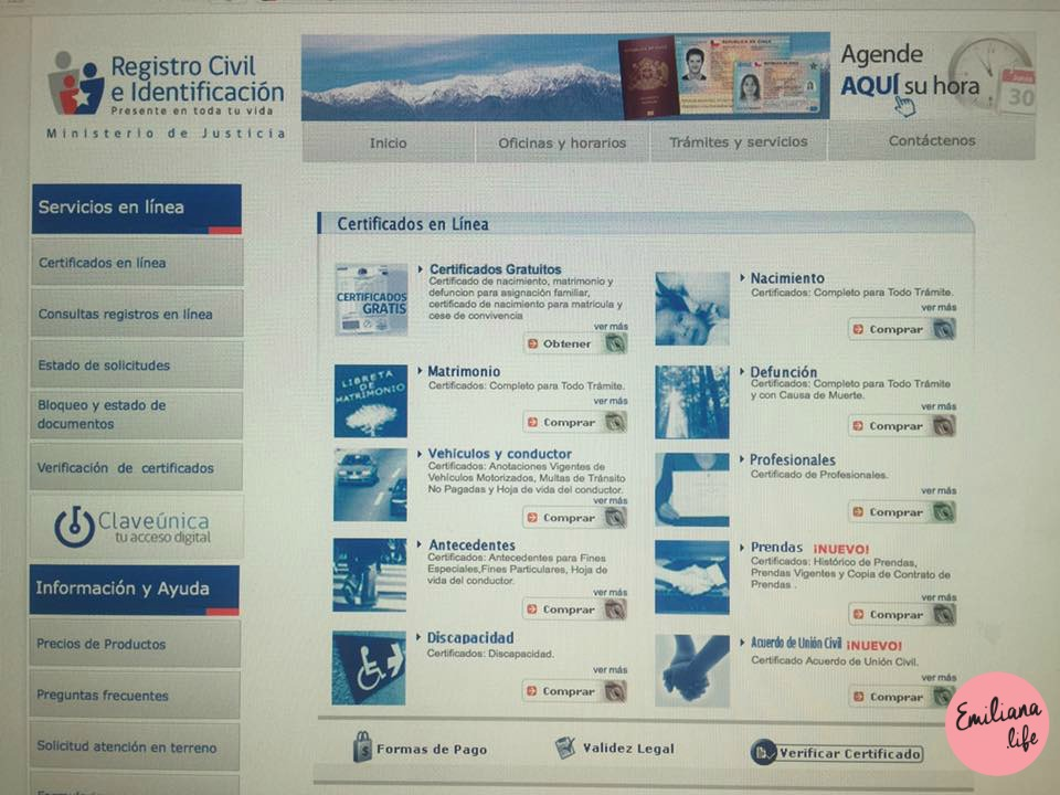 100 pagina web registro civil ch